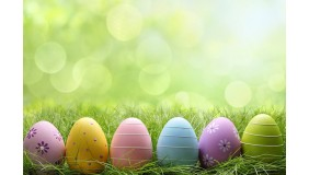 Mini Sesje Wielkanocne by Mika