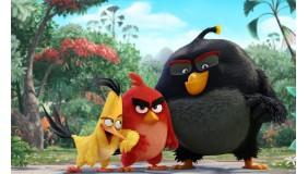 """""""Angry Birds Film"""" przedpremierowo!"""