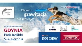 Zawody Latających Psów w Gdyni