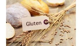 Gluten - prawdziwe zagrożenie czy gruba przesada? - wykład